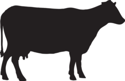 logo van De Loeiende Koe