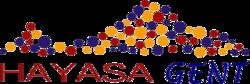 logo van Hayasa